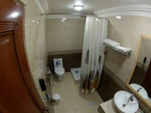 vip double bathroom private sitting westenr toilet
